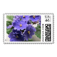 http://www.zazzle.com/purple_african_violet_flowers_stamps-172950944047140780 $22 for set of 20