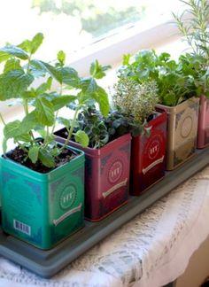 nice 31 Great Indoor Herb Garden Ideas for Healthy Life http://godiygo.com/2017/12/09/31-great-indoor-herb-garden-ideas-healthy-life/