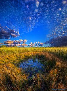 The Frog Pond - Milwaukee, Wisconsin