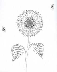 Original Scan From Johanna Basfords Book Asking To Create More Bees And Color The Picture