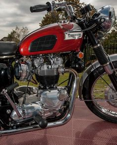 69 Bonnie Triumph Motorcycles, Triumph Motorbikes, Triumph Chopper, Indian Motorcycles, British Motorcycles, Triumph Bonneville, Cool Motorcycles, Vintage Motorcycles, Motorcycle Engine