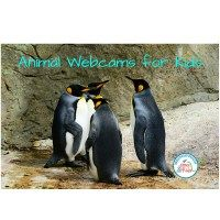 Animal Webcams for Kids ~ Science is for Kids