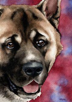 AKITA Original Watercolor Painting by Artist DJ Rogers of k9artgallery on Etsy♥♥
