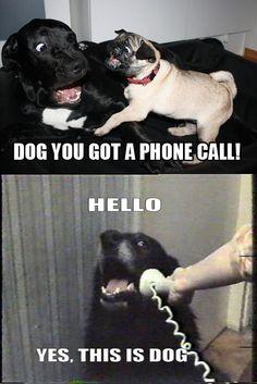 Hahaha!! I laughed hysterically at this!!!