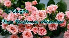 """""""TI RACCONTO LA STORIA DELLA MIA VITA. BLOG-DENUNCIA"""".      di Alessandra Gandini: 12 GIUGNO:  BUON COMPLEANNO A MIA SORELLA ALESSAND..."""