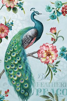 Blue Feathered Peacock I Art Print at AllPosters.com