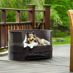 The Refined Canine Indoor/Outdoor Dog Day Bed - I so need to get this for my babies lol