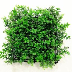 New items released! It's perfect for atrium green wall installation! Any interests, welcome to inquiry. It's ready for wholesale! Bring it to green your local! #artificialhedgessupplier #greenwall