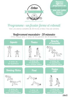 Exercices Fessier