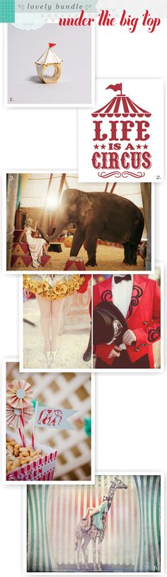 circus party - great ideas