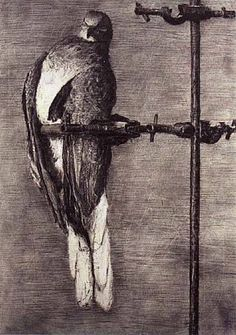 Kentridge - Birdcatcher. william kentridge - great intro artist for DIY animation. charcoal, paper, eraser and camera is all that's needed. think ....flipbook!