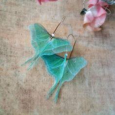 Beautiful luna moth earrings made from organza