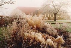 Piet Oudolf Hummelo Winter Garden ; Gardenista