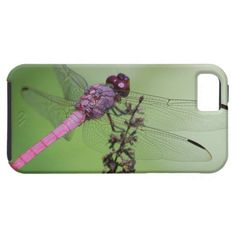 ==>>Big Save on          	Dragonfly hier res Janelle Holtman iPhone 5 Cases           	Dragonfly hier res Janelle Holtman iPhone 5 Cases you will get best price offer lowest prices or diccount couponeDeals          	Dragonfly hier res Janelle Holtman iPhone 5 Cases Review from Associated Store...Cleck link More >>> http://www.zazzle.com/dragonfly_hier_res_janelle_holtman_iphone_5_cases-179710807607457743?rf=238627982471231924&zbar=1&tc=terrest