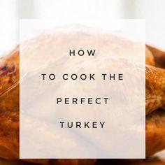 Best Chicken Or Turkey Roasting Rub Recipe on Pinterest