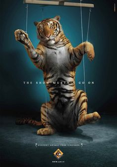 Wild Life So sad :( Support Animal Free Circuses animals are not food Fondation Brigitte Bardot, Advertisement Examples, Live Animals, Stop Animal Cruelty, Stop Animal Testing, Animal Protection, Powerful Images, Poster Ads, Animal Posters
