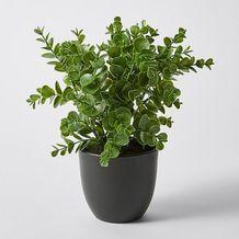 Faux Shrub In Pot – Target Australia Laundry Decor, Blue Rooms, Centre Pieces, Artificial Plants, Shrubs, Greenery, Planter Pots, Target, House Design