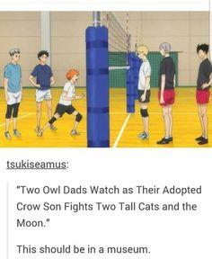 Haikyuu owl team & cat team
