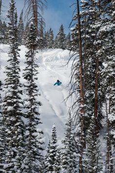 Crested Butte, CO - my favorite ski vacation! Winter Family Vacations, Ski Vacation, Vacation Places, Vacation Rentals, Places To Travel, Colorado Winter, Aspen Colorado, Colorado Mountains, Rocky Mountains