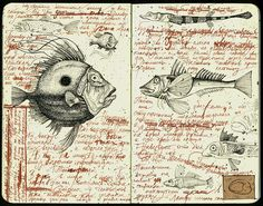 Fishes by julia_julia.f, via Flickr