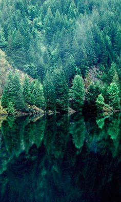 Detroit Lake southeast of Salem, Oregon