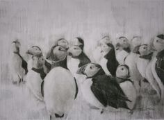 (SOLD) #44 Did you know that baby puffins use an outside toilet so as to not soil their feathers or bed.