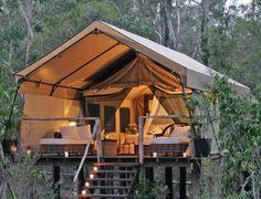 Platform tents at Paperbark Camp in Australia.