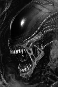 Discover recipes, home ideas, style inspiration and other ideas to try. Les Aliens, Aliens Movie, Alien Tattoo Xenomorph, Hr Giger Art, Giger Alien, Predator Alien, Predator Series, Alien 1979, Alien Queen