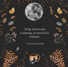 October Country, Autumn Cozy, Autumn Fall, Mabon, Samhain, Autumn Aesthetic, Best Seasons, Hello Autumn, Fall Harvest