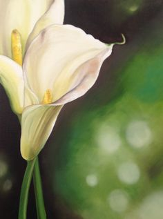 This beautiful lily with a soft focus background was painted by Veronique Oodian as part of our oils florals module. Coming soon to ArtTutor Oil Painting Basics, Oil Painting Lessons, Oil Painting Supplies, Acrylic Painting Tutorials, Kids Watercolor, Watercolor Flowers, Oil Painting Background, Art Tutor, Calla Lillies