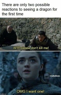reactions to seeing a dragon, Game of Thrones. - First reactions to seeing a dragon, Game of Thrones. -First reactions to seeing a dragon, Game of Thrones. - First reactions to seeing a dragon, Game of Thrones. Game Of Thrones Meme, Gsme Of Thrones, Game Of Thrones Books, Game Of Thrones Dragons, Game Of Thrones Stuff, Game Of Throne Lustig, Quotes Sherlock, Game Of Thrones Wallpaper, Dragon Sports