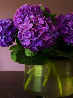 Love these hydrangeas....