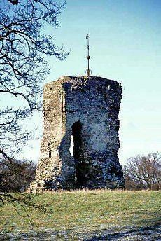 Folly or curiosity? The ruins of Knepp castle in West Sussex, a strange and solitary ruin close to the Worthing to London road at West Grinstead Abandoned Houses, Abandoned Places, Images Of England, Horsham, Worthing, Castle Ruins, Manor Houses, Chateaus, Ancient Ruins