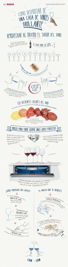 Pasos básicos para disfrutar del vino: | 16 Datos gráficos para los amantes del vino