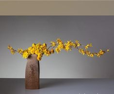 They call me mellow yellow Arte Floral, Deco Floral, Floral Design, Ikebana Flower Arrangement, Ikebana Arrangements, Floral Arrangements, My Flower, Flower Art, Cactus Flower