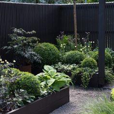 Garden Without Lawn Incredible Fresh 40 Terrace In The Garden Design Unique garden Unique Gardens, Small Gardens, Beautiful Gardens, Outdoor Gardens, Dream Garden, Home And Garden, Townhouse Garden, Deco Floral, Contemporary Garden