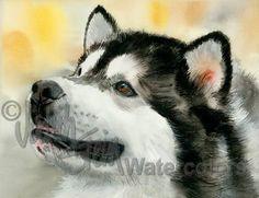 Impresión de arte acuarela ALASKAN MALAMUTE perro retrato Giclee
