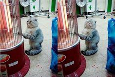 warm~<3