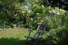 Mon Jardin Mes Merveilles: Bienvenue