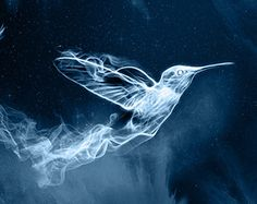Ahhhhh! Guys I took the Pottermore test today and my patronus is a hummingbird!!! -Gigibella225