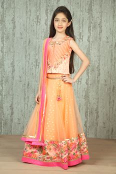 Net ghagra with printed borders and dupion silk choli embellished with zari work