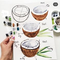 Zeichnen Ideen mit detaillierten Anleitungen Learn to draw coconut, instructions in three steps, pictures for painting for beginners Watercolor Drawing, Painting & Drawing, Watercolor Paintings, Painting Tools, Drawing Base, How To Watercolor, Watercolors, Drawing Drawing, Hope Painting