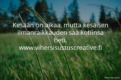 Puhdista ilmaa viherkasveilla. Vihersisustus Creative.
