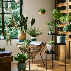 Interior Design Inspiration, Home Decor Inspiration, Decor Ideas, Sainsburys Home, Kitchen Cabinet Styles, Kitchen Cabinets, Aesthetic Room Decor, My New Room, Plant Decor
