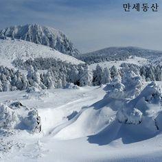 Pure white #Hallasan Mountain in winter | #Jeju island, Korea