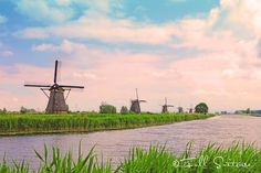 I've seen many pictures of the windmills of Kinderdijk over the years, but I never knew what the story behind them was. We visited Kinderdijk with kids and Manhattan Times Square, Lower Manhattan, Liberty New York, Vintage New York, Thailand Travel, Windmills, Over The Years, Family Travel, Statue Of Liberty