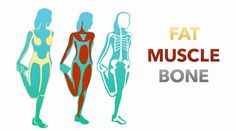 TruHealth™: Understanding Body Composition Index (Video)