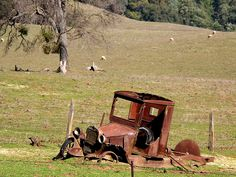 "Is this not a beauty? The old Model T Ford was found on an old sheep ranch in Mountain Ranch, California. The saw blade was part of the the belt driven car - Photo by ""i shutter the thought"" via flickr. #ruins"