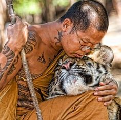 Buddhist monk and tiger