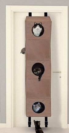 could make this out of hanging shelves...Hangin' Cat Condo